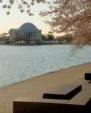 Memoriale del Jefferson in primavera Fotografia Stock Libera da Diritti