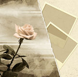Memories. Grunge background with rose and photoframes Stock Photography