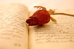 Memories. Dried red rose on an open old book romantically lit Royalty Free Stock Photo