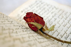 Memories. Closeup of dried red rose on an open old book Stock Images