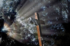 Memories. Ground zero cross with sun rays in forest stock image