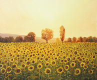 Memories of The Summer. An oil painting on canvas of a rural sunset landscape with a golden sunflower field lit by the warm light of the setting sun and trees Royalty Free Stock Images