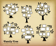 Memories tree with frames. Memories tree with picture frames. Insert your photo into template frames. Collage vector illustration Stock Images