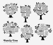 Memories tree with frames Stock Image