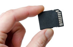 Memory Card. In a hand on a white background Stock Photography