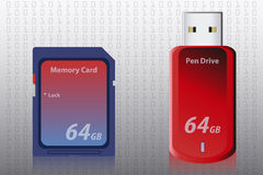 Memory Card and Pen Drive Royalty Free Stock Images