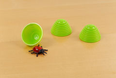 Memory Game. With Cups and Lady Bug Stock Photo