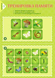 Memory game children Insects Stock Images