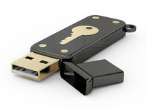 Memory stick Royalty Free Stock Photography