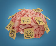 Memory Sticky Notes. Human brain with yellow sticky notes attached. Concept of good or bad memory. Clipping path included Royalty Free Stock Photos