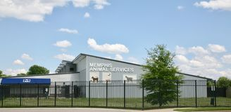 Memphis Animal Services Royaltyfria Bilder