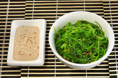 Menú del sushi, ensalada y salsa de la alga marina Imagen de archivo