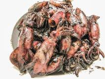 Menú hervido de la comida del calamar para el restaurante Fotografía de archivo libre de regalías