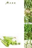 Menú verde Foto de archivo libre de regalías