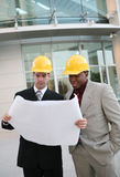 Men Architects Royalty Free Stock Photo