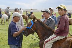 Men attach blue ribbon to the bridle of winner's horse circa Harhorin, Mongolia. Royalty Free Stock Image