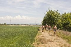 Men with bare breast running in a field Royalty Free Stock Photo