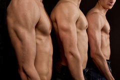 Men bare torsos. Three men's bare torso standing in a row Royalty Free Stock Photos