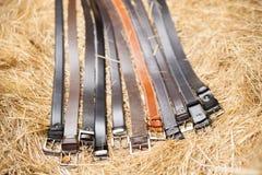 Men belt black Royalty Free Stock Images