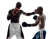 Men boxers boxing isolated silhouette Stock Photos