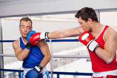 Men boxing. Stock Photos