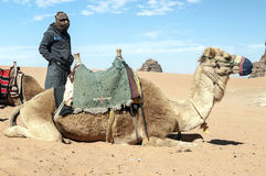 Men with a camel Royalty Free Stock Images