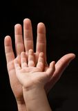 Men and child's palm together Royalty Free Stock Image