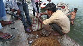 Men collecting fish in bag at ghat in Varanasi, with children standing aside. stock video footage