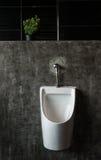 Men& x27; cuarto de baño de s Fotografía de archivo