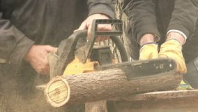 Men cutting wood logs with chainsaw stock footage