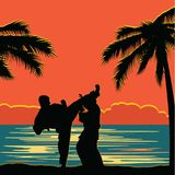 Men demonstrate karate. On the shore of the ocean Royalty Free Stock Image