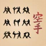Men demonstrating karate. Royalty Free Stock Photos