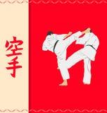 Men demonstrating karate. Royalty Free Stock Images
