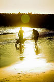 Men & Dog. Silhouette of two men and a dog on the beach at sunset royalty free stock images