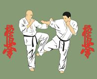 Men are engaged karate . Royalty Free Stock Photography