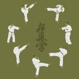 Men engaged in karate. Royalty Free Stock Images
