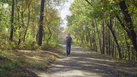 Men enjoy autumn in the forest. Handsome man walking on the road in the forest smoking electronic cigarette. Adult guy going in the park with magnificent nature royalty free stock images