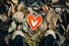 Men feet standing on ground. With autumn leaves, top view Stock Image