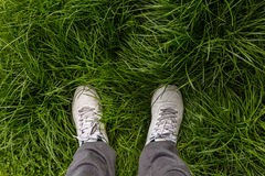 Men feet. In white leather shoes on green grasses Royalty Free Stock Photography