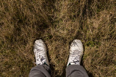 Men feet. In white leather shoes on meadow Stock Photography