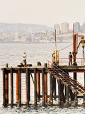 Men fishing Royalty Free Stock Photography