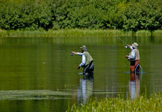 Men fishing. Senior men fishing royalty free stock photography