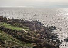 Men Fishing on the Coast Royalty Free Stock Image