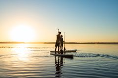 Men, friends relax on a SUP boards. In large river during sunset. Stand up paddle boarding - awesome active recreation in nature. Backlight, wide angle royalty free stock image