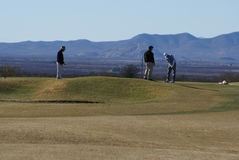 Men Golfing. Three men putting on green in Arizona in the winter time with beautiful mountains in the background Stock Image