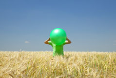 Men with green ball at wheat field. Stock Photos