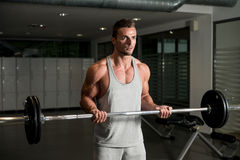 Men In The Gym Exercising Biceps With Barbell Royalty Free Stock Photos