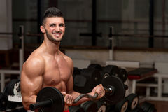 Men In The Gym Performing Biceps Curls With A Barbell Royalty Free Stock Photography