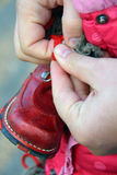 Men hands lacing little shoe Royalty Free Stock Images