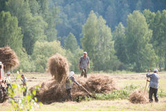 Men haymaking. Russia field country hay men haymaking Royalty Free Stock Photography